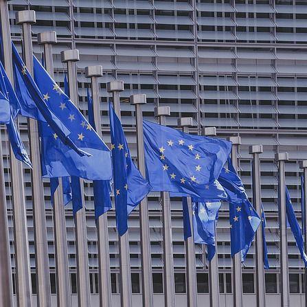 Base de datos de programas y convocatorias de financiación europea
