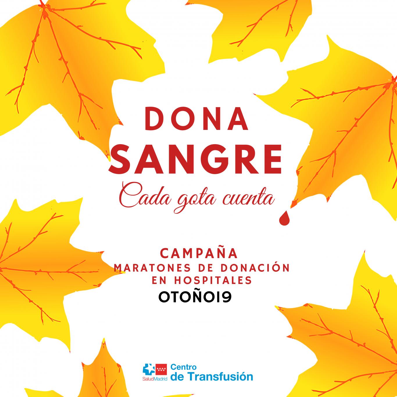 Cartel campaña de otoño con hojas amarillas y el lema Dona sangre Cada gota cuenta