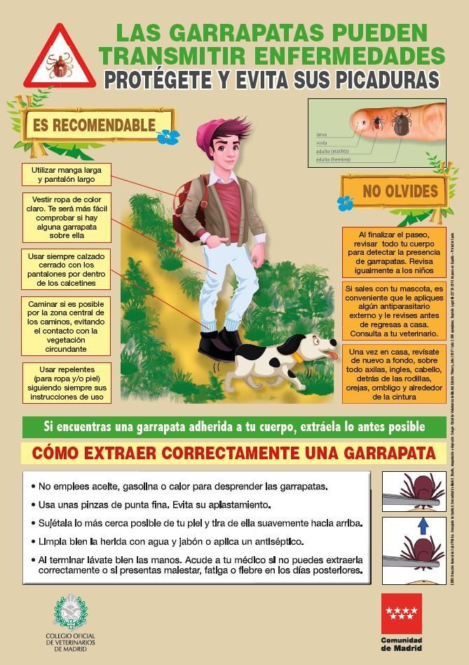 Imagen del cartel Las garrapatas pueden transmitir enfermedades