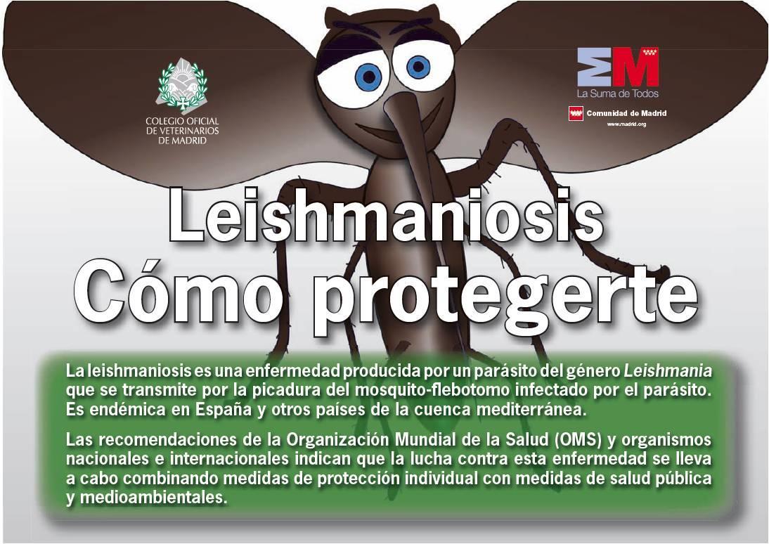 Portada de la publicación Leishmaniosis. Cómo protegerte