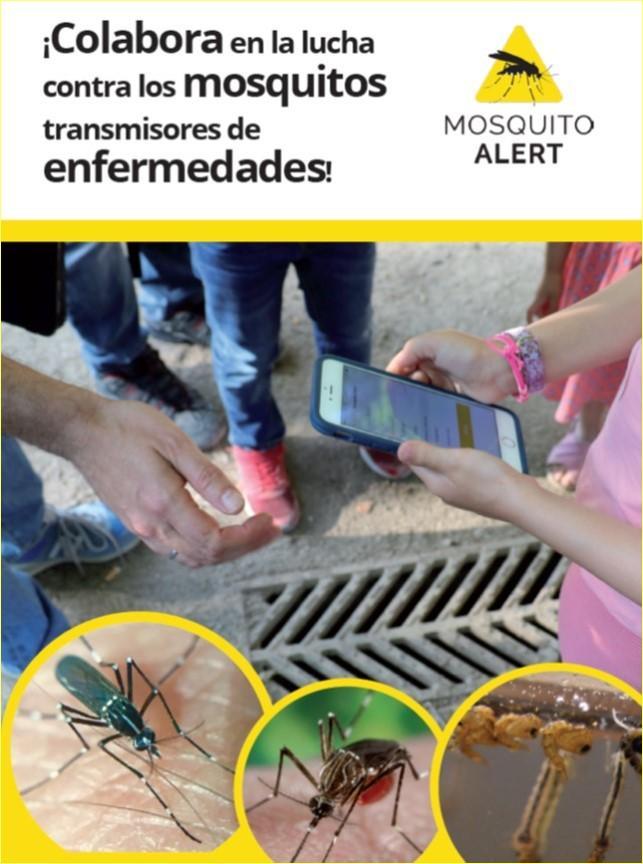 Portada del díptico de Mosquito Alert Colabora en la luchas contra los mosquitos transmisores de enfermedades