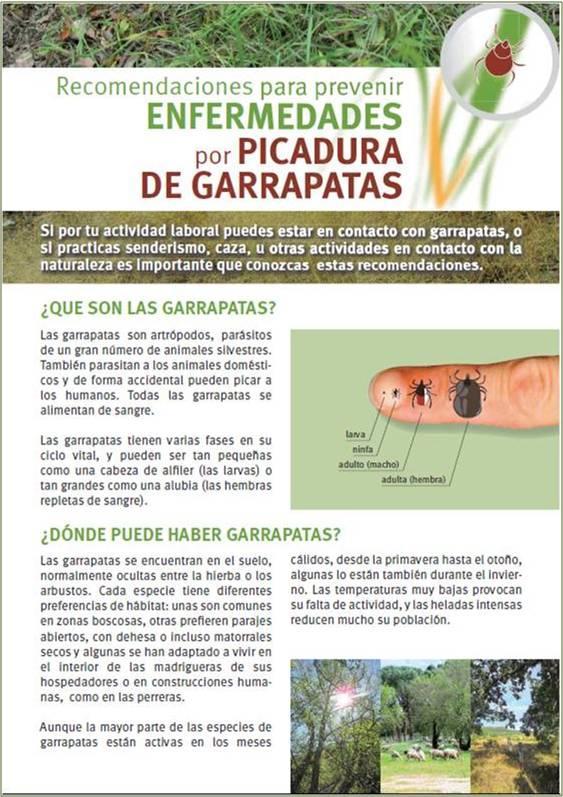 Portada de la publicación Recomendaciones para prevenir enfermedades por picadura de garrapata