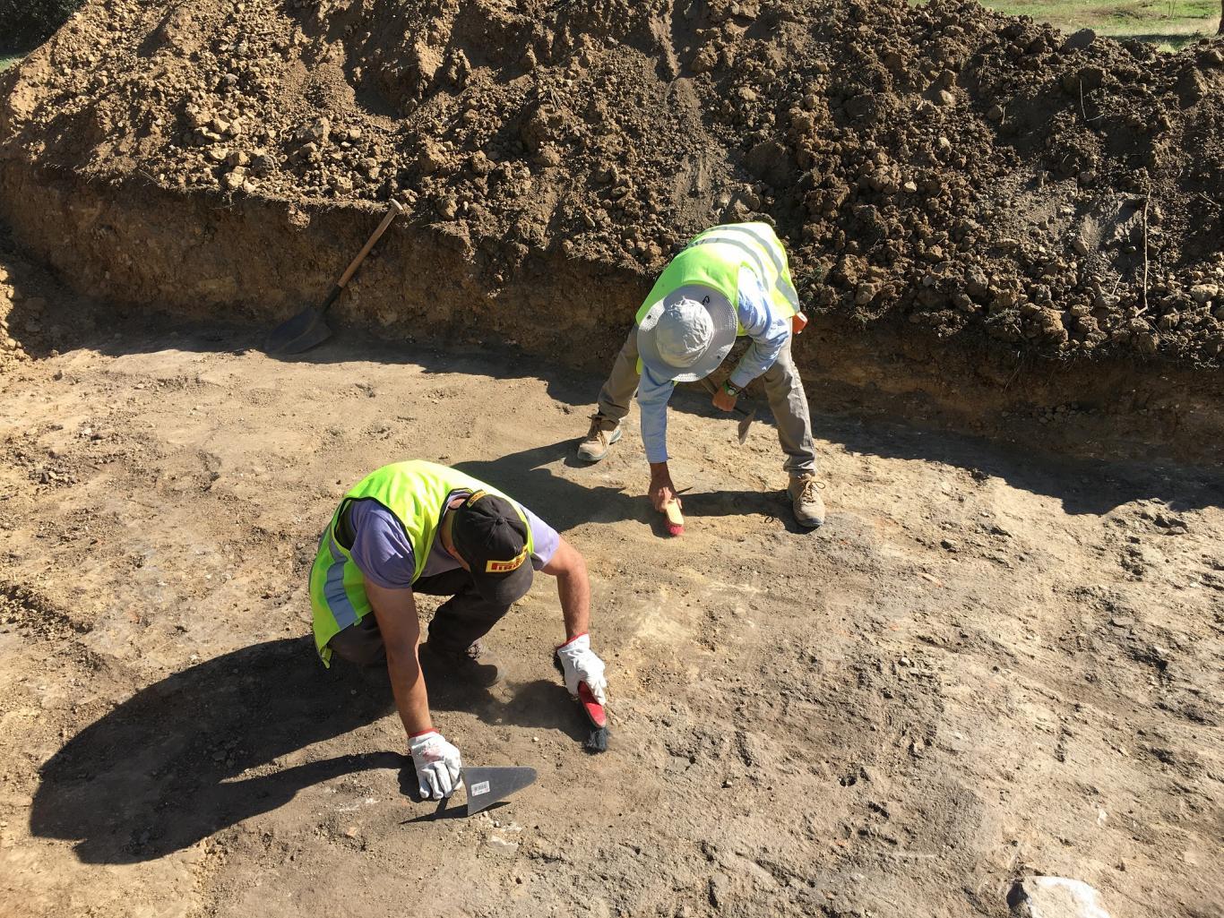 Imagen de labores de desbroce del terreno