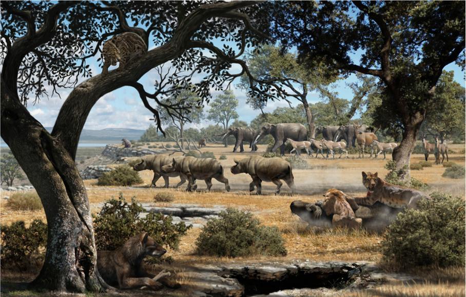 Imagen representación de la fauna del Cerro de los Batallones