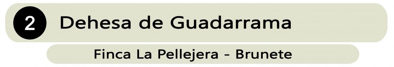 Ganadería Dehesa de Guadarrama