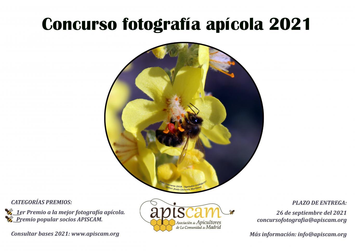 concurso_fotografia_2021