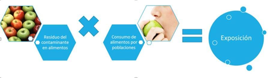 Esquema que muestra la exposición a contlimento, aminantes de la forma: Residuo del contaminante en el alimento, multiplicado por el consumo de ese alimento es igual a la llamada Exposición