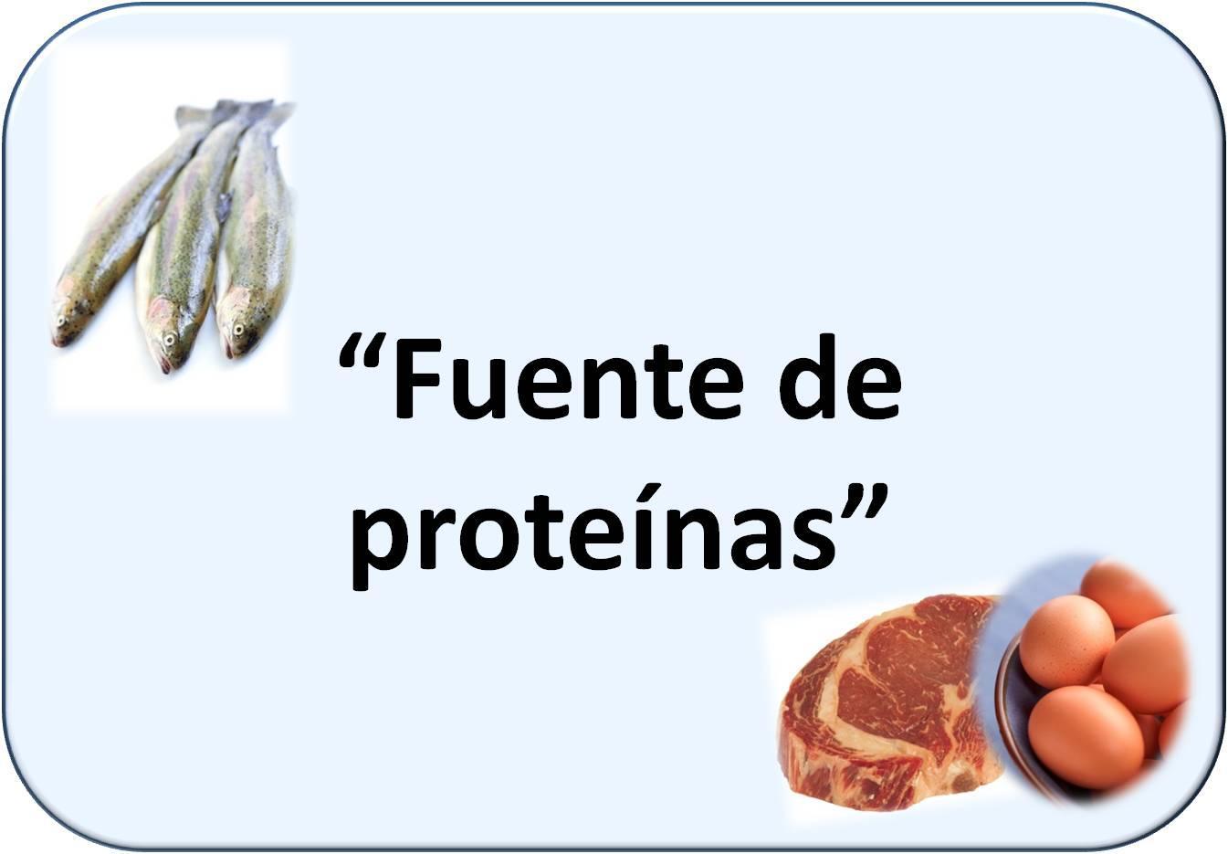 Simbología de proteínas: pescado, carne y huevos