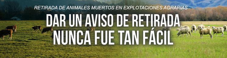 Imagen banner retirada animales muertos