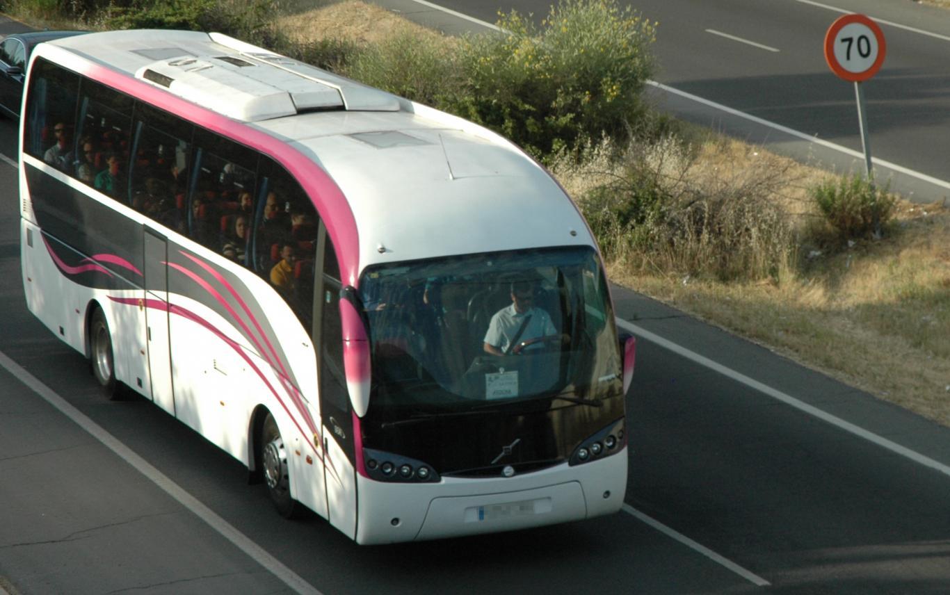 Autobus Rosa