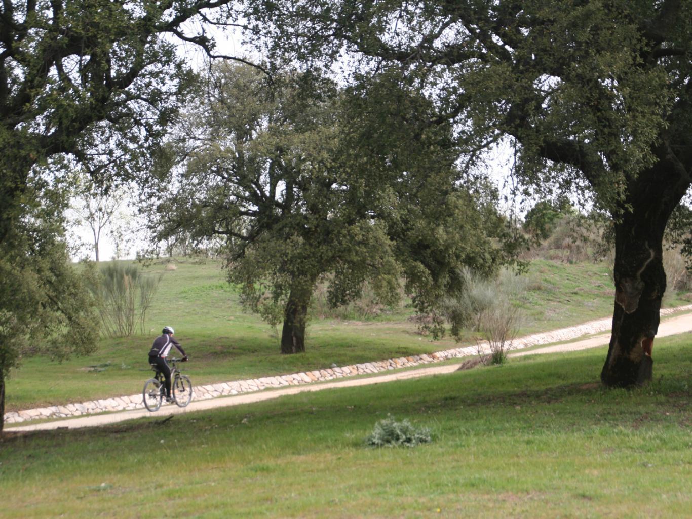 Ciclista en el parque de Las Presillas