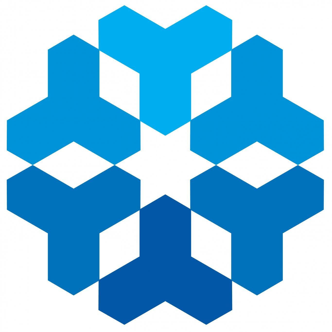 Logo de un copo de nieve en color azul sobre fondo blanco