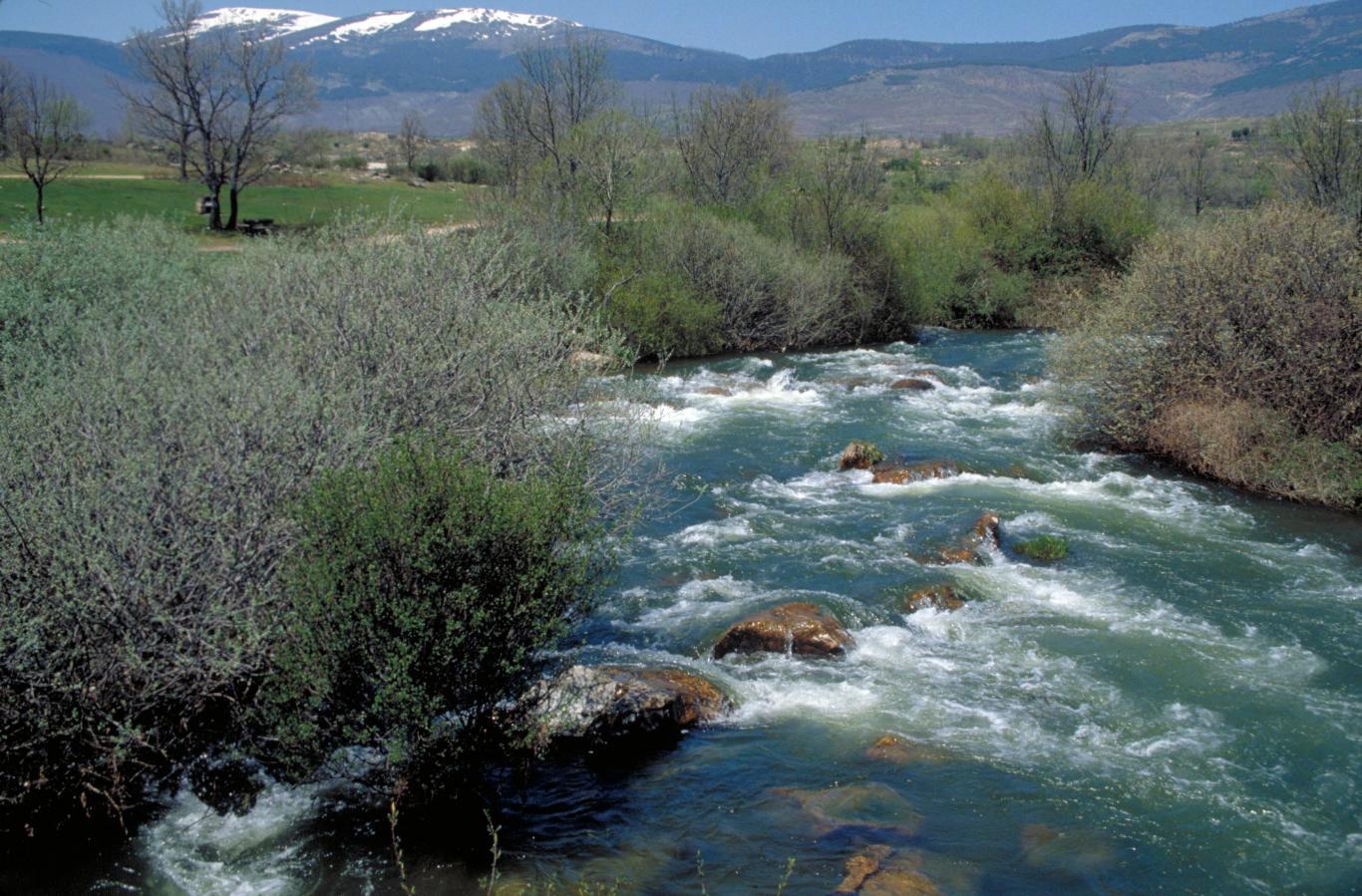 Imagen del Río Lozoya