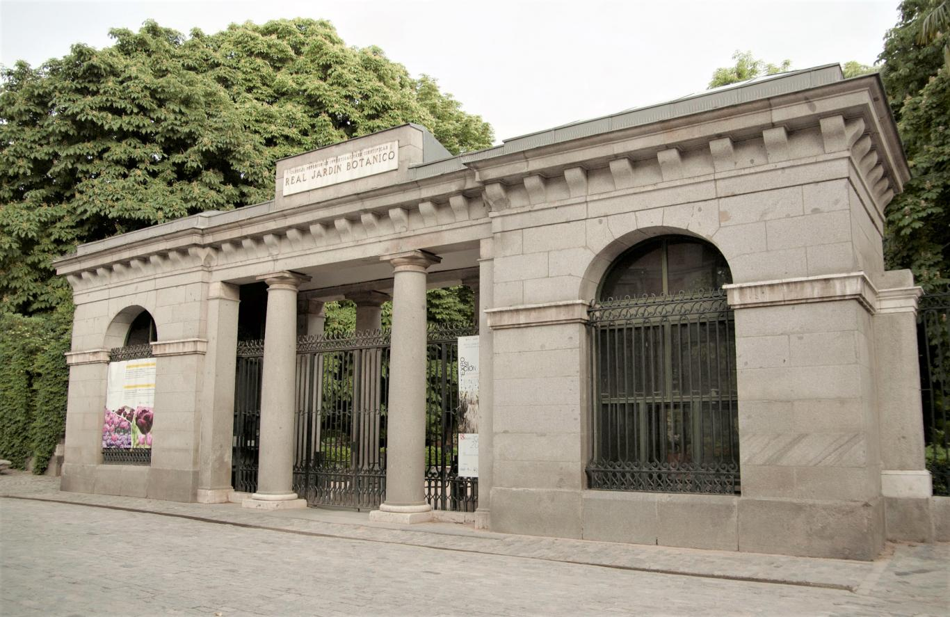 Jardín Botánico. Madrid