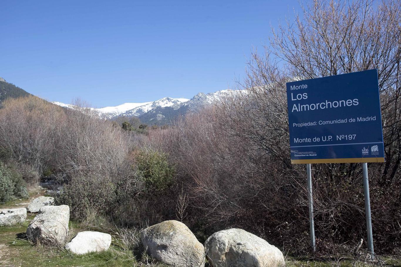 Monte de Utilidad Pública nº 197. Los Almorchones. Navacerrada