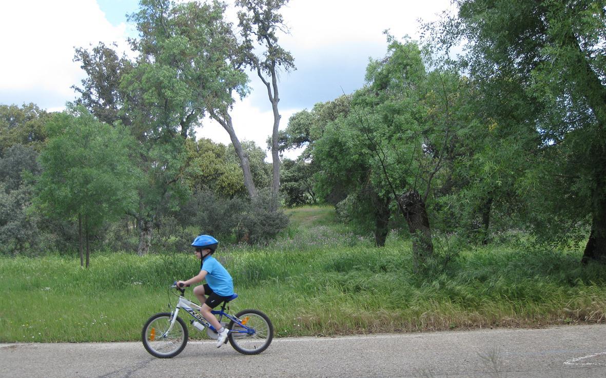 Niño montando en bici en una pista asfaltada en el campo
