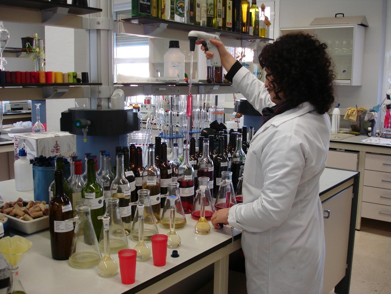Instituto Madrileño de Investigación y Desarrollo Rural, Agrario y Alimentario (IMIDRA)
