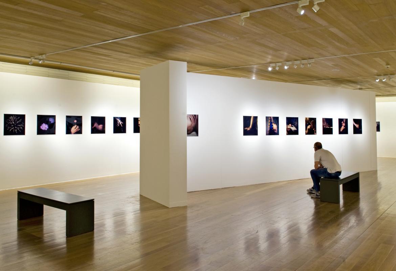 Alejandro Rego,Galería