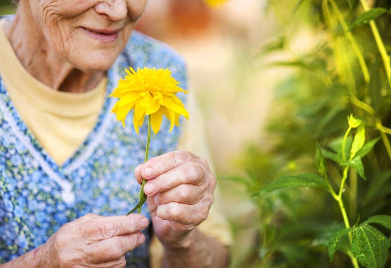 Mujer mayor con flor en la mano