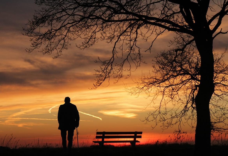 Persona mayor con un bastón, de espaldas, viendo la puesta de sol en el campo