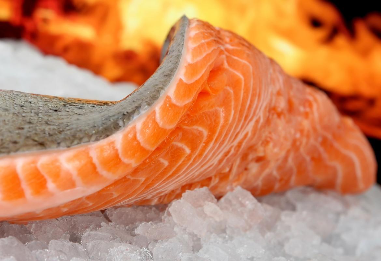 Rodaja de salmón sobre hielo y con fondo de una brasa