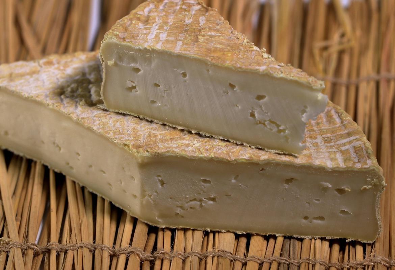 Cuña de queso