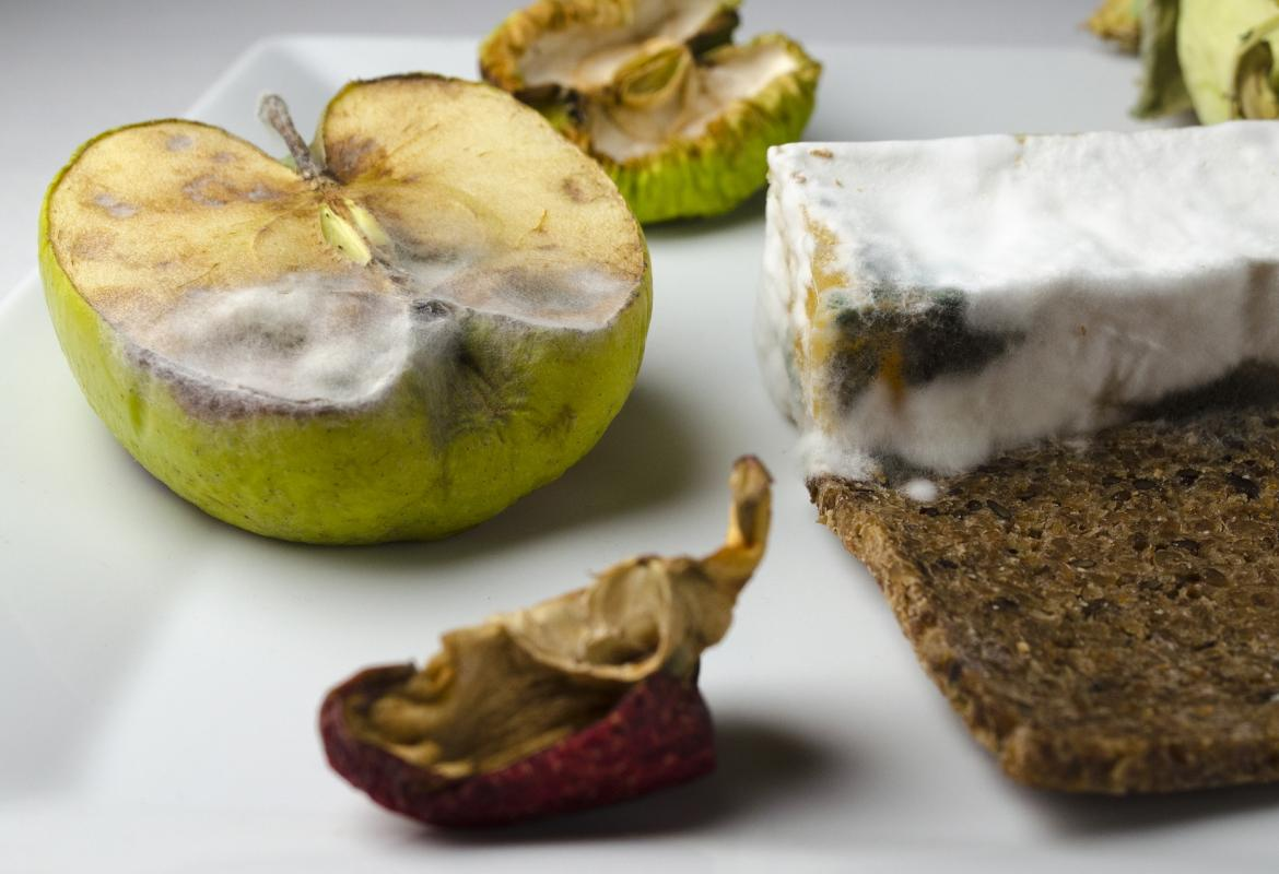 que alimentos contienen más toxinas
