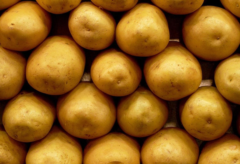 Patatas colocadas en orden