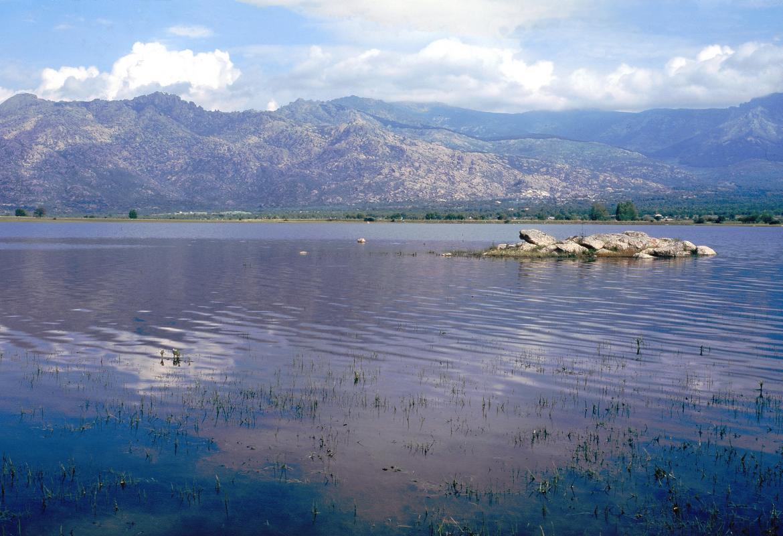 Embalse de Santillana. Manzanares El Real