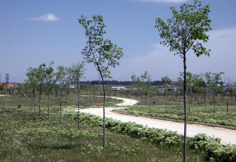 Parque Forestal Bosquesur. Leganés, Fuenlabrada, Getafe y Pinto