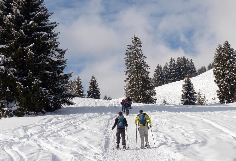 Excursión con raquetas de nieve