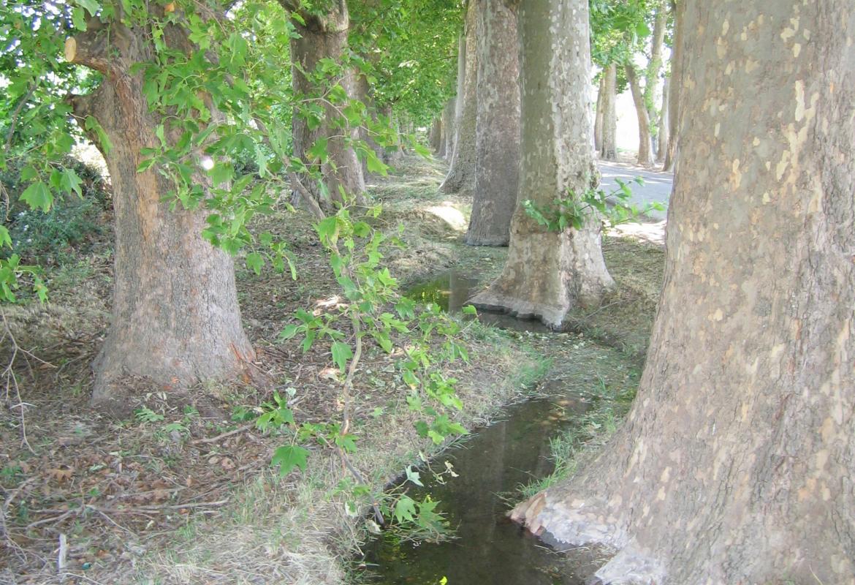 Sistema de riego con caceras en Aranjuez