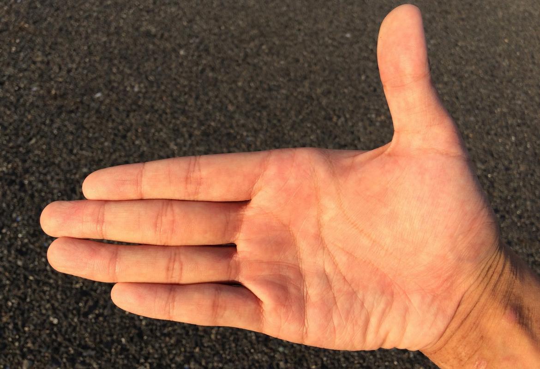 palma de la mano