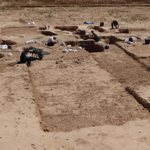 Imagen de Área funeraria con cremaciones Julio-Claudias e inhumaciones Antoninas