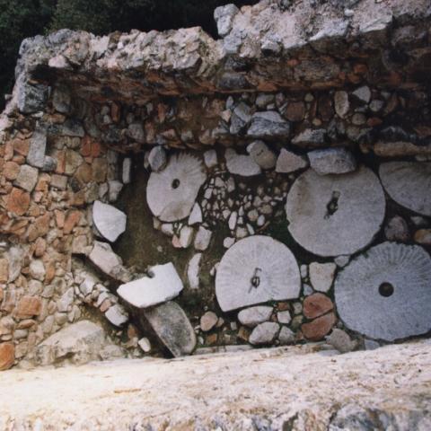 Imagen de la cuadra