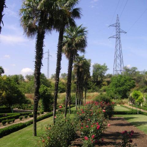 Torrelaguna, jardines de santa lucía