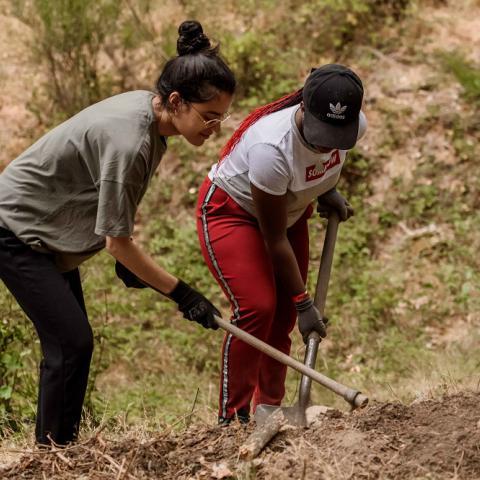 Jóvenes realizando trabajo en el campo