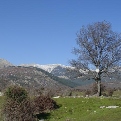 Reserva de la Biosfera Cuenca Alta del río Manzanares. Hueco de San Blas