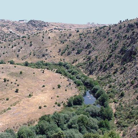 Reserva de la Biosfera Cuenca Alta del río Manzanares. Río Manzanares