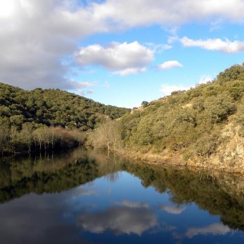 Parque Regional de la cuenca alta del Manzanares. Embalse de Los Ciervos
