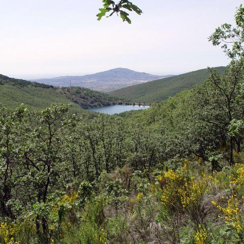Parque Regional de la cuenca alta del Manzanares. Embalse de Miraflores