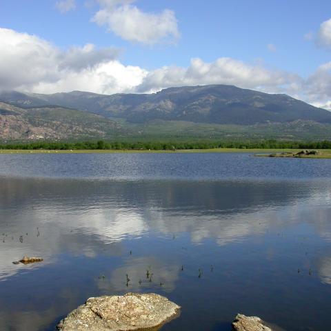 Embalse de Santillana. Parque Regional de la Cuenca alta del Manzanares