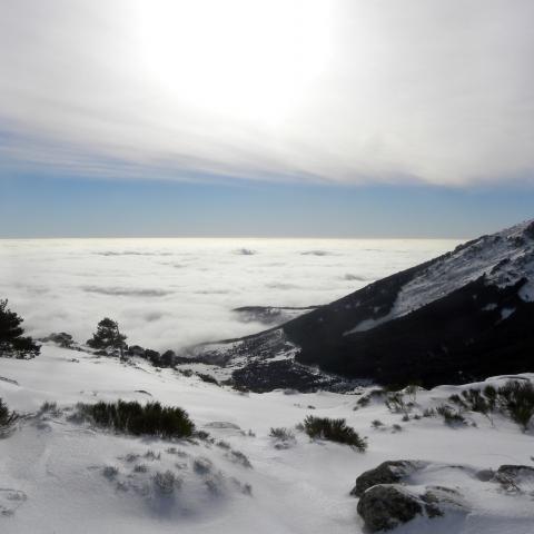 Parque Regional de la cuenca alta del Manzanares. Mar de nubes