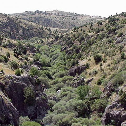 Parque Regional de la cuenca alta del Manzanares. Río Manzanares