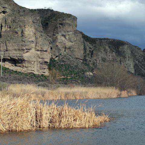 Parque Regional del Sureste_El Campillo