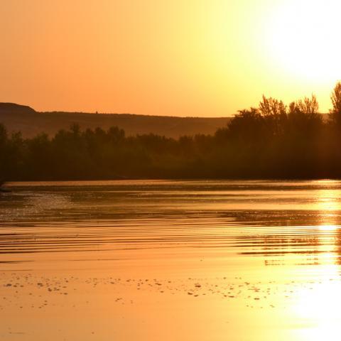 Parque Regional del Sureste_Soto de las Juntas al amanecer
