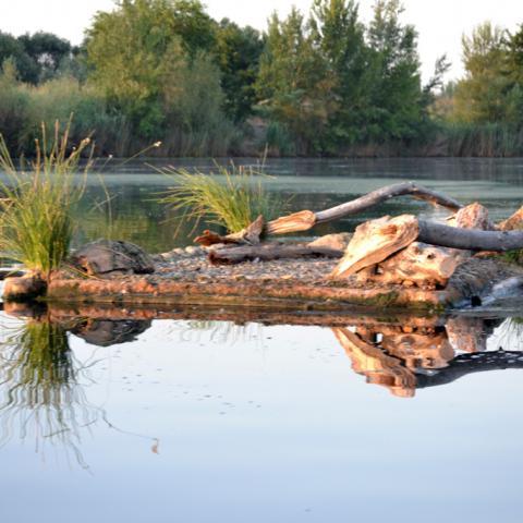 Parque Regional del Sureste_Soto de las Juntas. Islote artificial