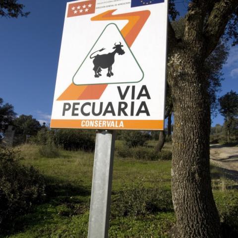 Foto señal Vías Pecuarias