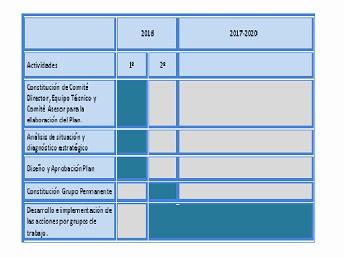 Cronograma del Plan de Enfermedades Poco Frecuentes