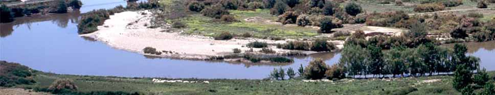 Recuperación y conservación de ríos humedales